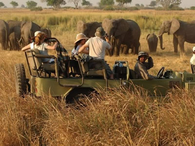 Game Viewing in Kidepo